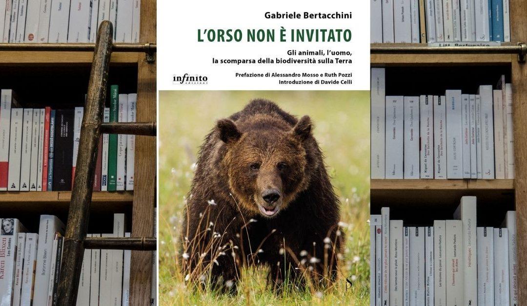 L'orso non è invitato, racconta il bisogno di condividere l'ambiente in cui viviamo con gli altri animali