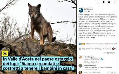 Assediati dai lupi, bambini in pericolo: il cattivo giornalismo che alimenta immotivate paure facendo pessima informazione