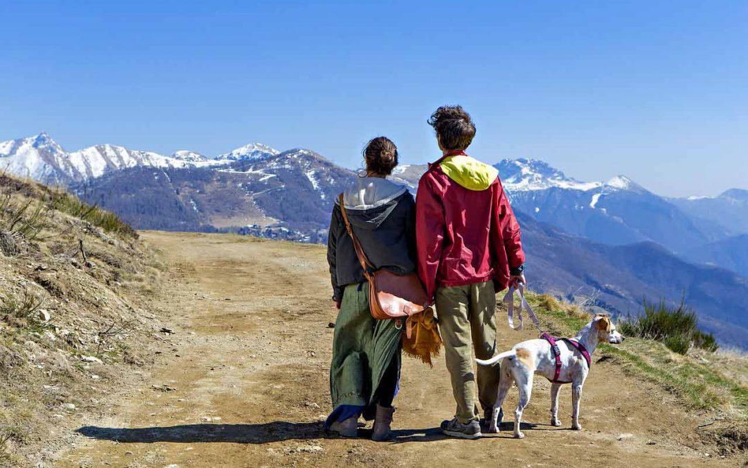 Cani al guinzaglio nelle aree naturalistiche: rispettare le regole per difendere l'ambiente