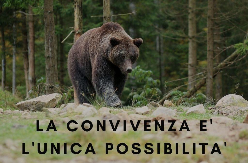 Scegliere di convivere con gli animali selvatici non è una scelta, ma una necessità
