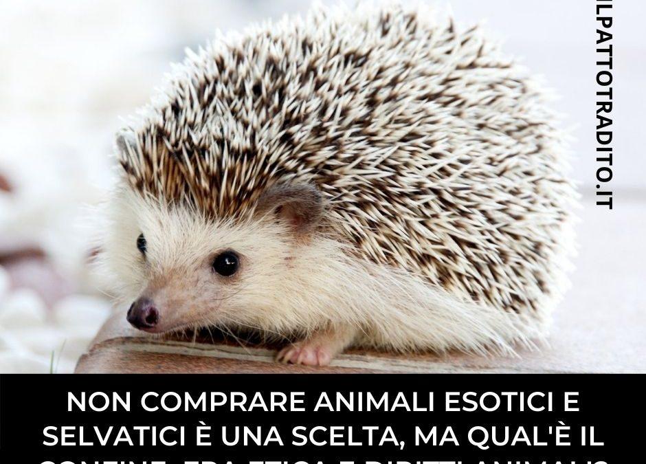 Diritti animali e coerenza: fra bugie del marketing e scorciatoie etiche di alcuni difensori