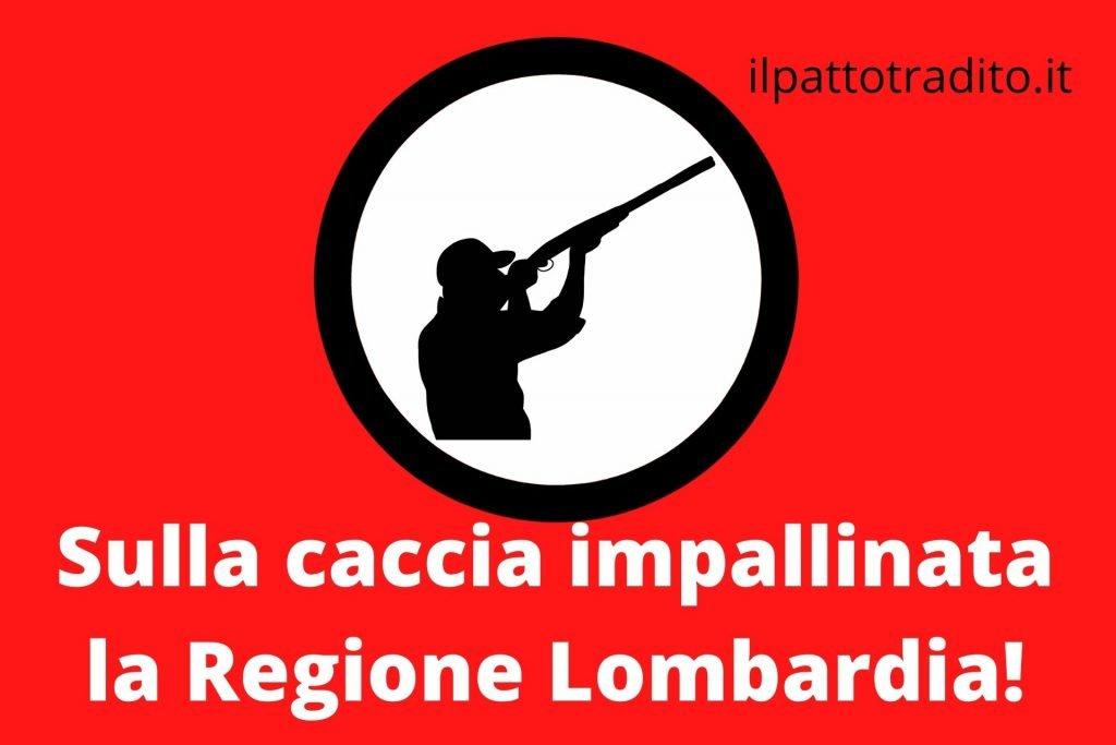 caccia impallinata Regione Lombardia
